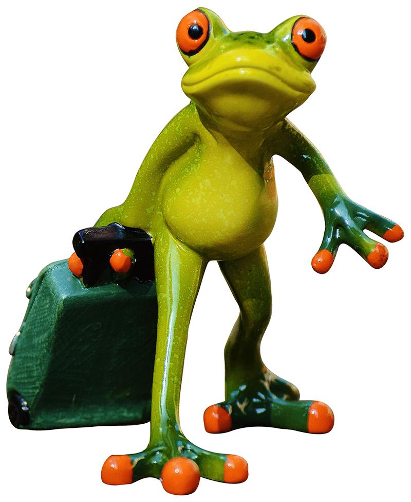 Viaggia con Dealfrog!